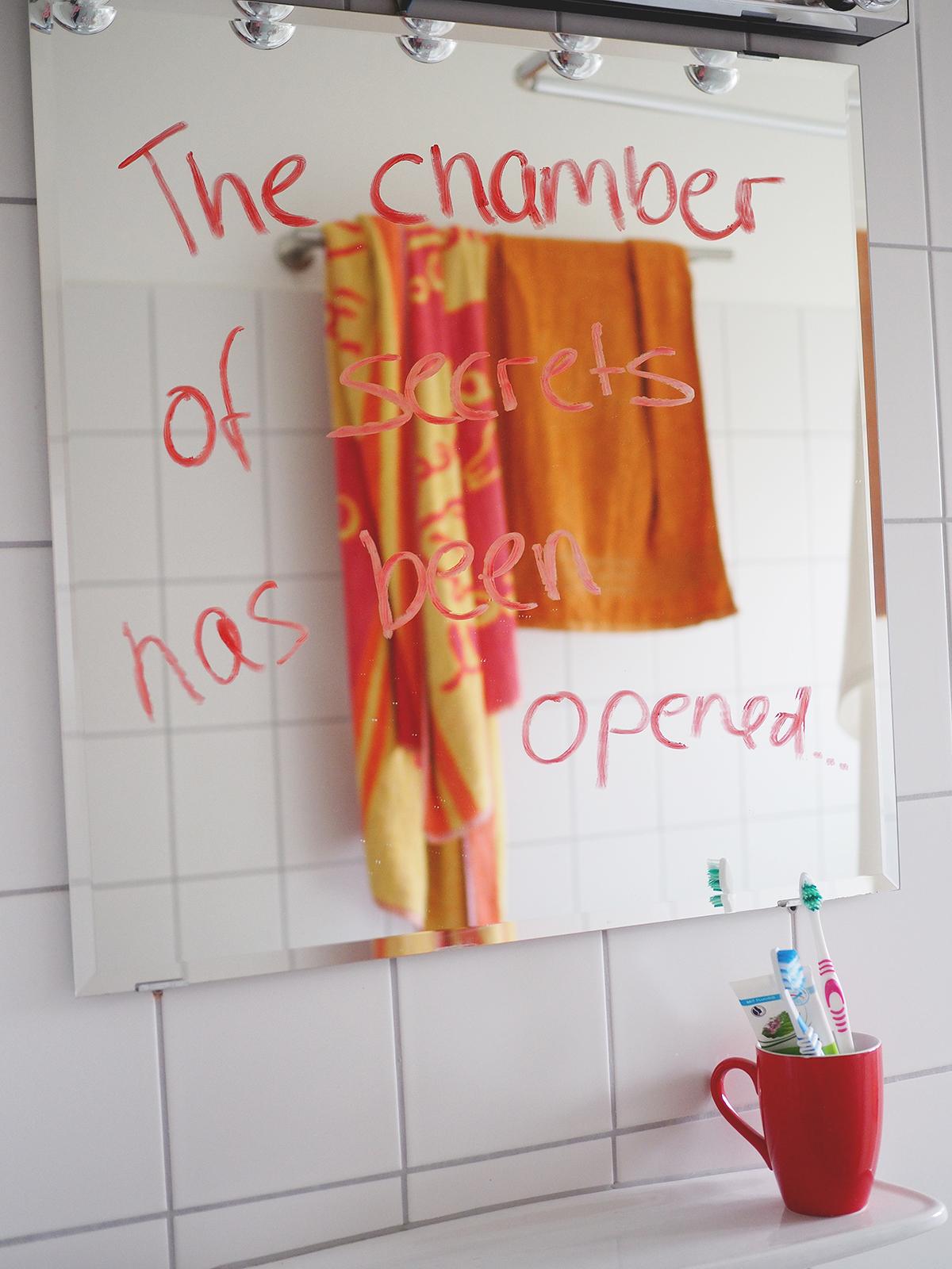 Harry Potter Geburtstag Party chamber of secrets